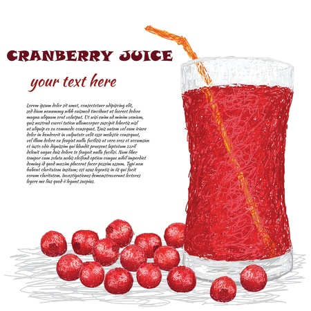 closeup illustration of fresh cranberries and a glass of cranberry juice isolated in whtie background  Illustration
