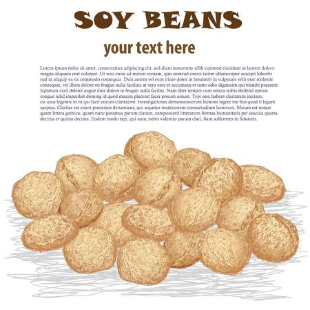 close-up afbeelding van heap van soja bonen geïsoleerd op witte achtergrond