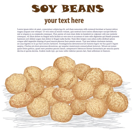 closeup illustration of heap of soy beans isolated in white background
