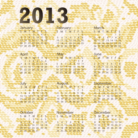 closeup illustration of a patterned albino snake skin of year 2013 calendar  Vector