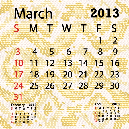closeup illustration of a patterned albino snake skin background for march 2013 calendar  Vector