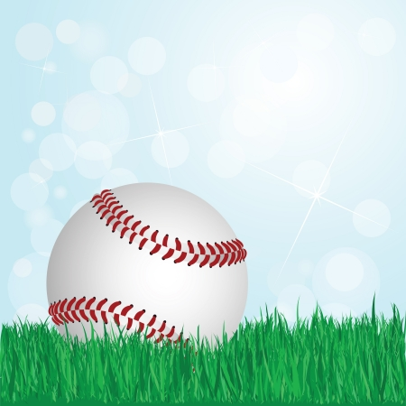 illustration of baseball on grass with sunshine and flare on background    Vector