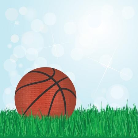 illustration of basketball on grass with sunshine and flare on background    Stock Vector - 17665761