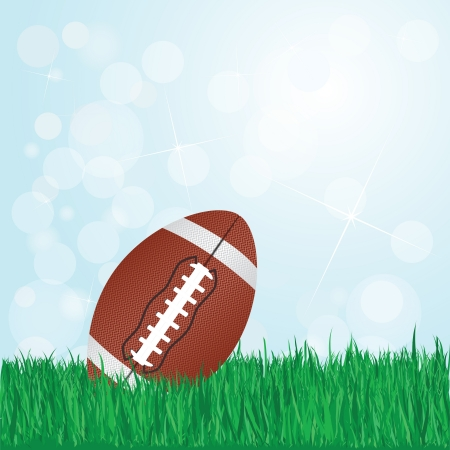 pigskin: illustration of football on grass with sunshine and flare on background    Illustration