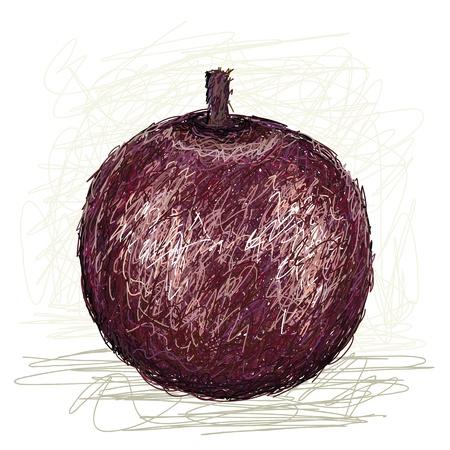 oxidant: illustration of fresh star apple fruit isolated in white background   Illustration
