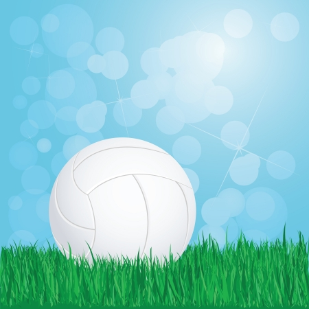 volley ball: illustration of volleyball on grass with sunshine and flare on background