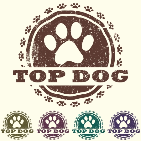 illustration of vintage grunged pet related label, stamp with paws and bold TOP DOG text in it