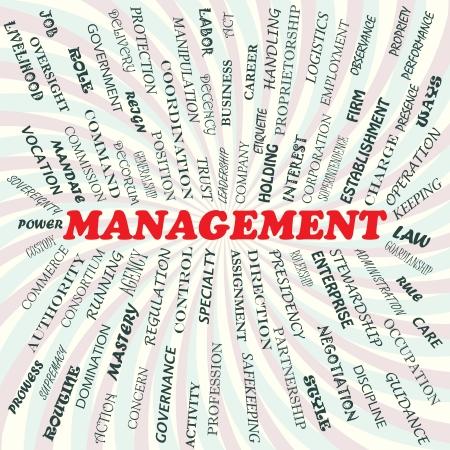 management concept: Ilustraci�n del concepto de gesti�n Vectores