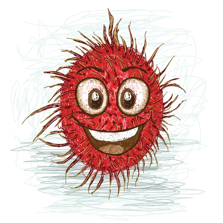 happy red rambutan cartoon character smiling    Vector