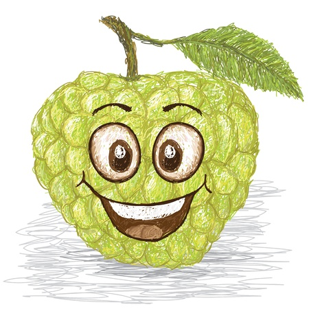 custard apple fruit: happy green custard apple, sweetsop cartoon character smiling