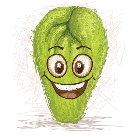 happy chayote vegetable cartoon character smiling    Illustration