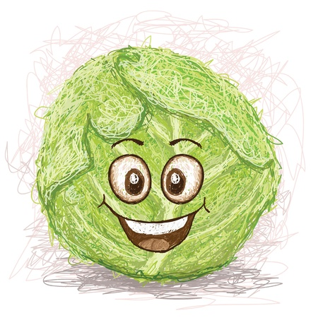 happy green cabbage vegetable cartoon character smiling    Vector