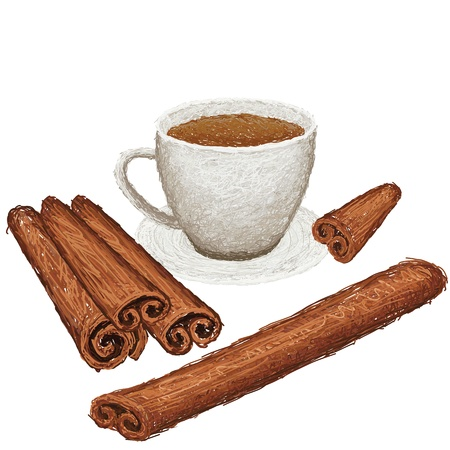 unique style illustration of cinamon sticks and a cup of cinamon drink isolated in whtie background    Vector