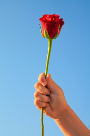 admirer: A gift from an admirer