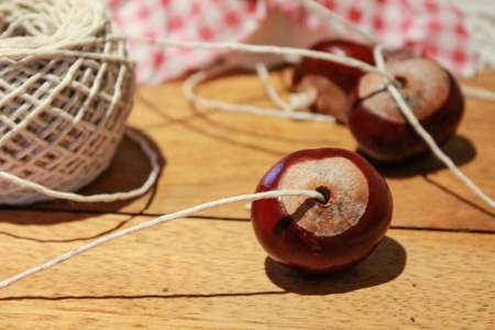 shiny: Preparing for a game of conkers