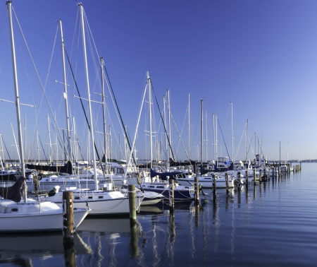Marina on the Chesapeake Bay photo