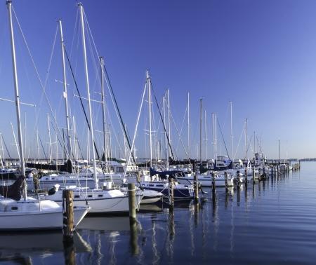 marina: Marina on the Chesapeake Bay