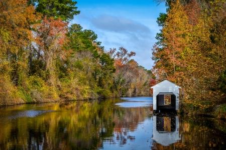 dismal: Dismal Swamp Canal