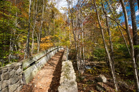 appalachian trail: Foot bridge located on the Appalachian Trail in George Washington Forrest on the Blue RidgeParkway Stock Photo