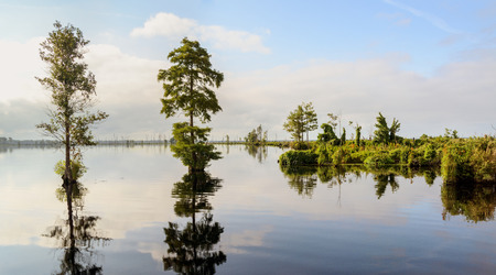 dismal: Lake Drummond is a freshwater lake at the center of the Great Dismal Swamp, a marshy region on the Coastal Plain of southeastern Virginia and northeastern North Carolina between Norfolk, Virginia, and Elizebeth City, North Carolina