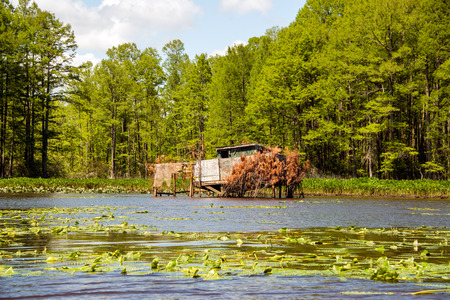 duck hunting: A duck blind on the Chickahominy river, just west of Williamsburg, Virginia.