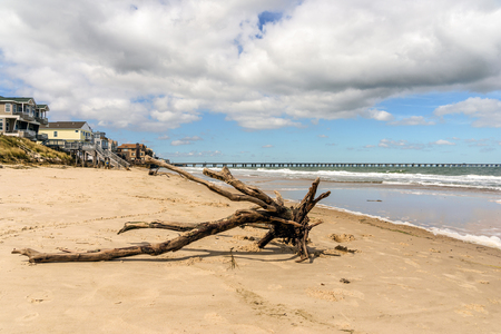 joaquin: Some driftwood left on the beach in Virginia Beach, Va. after the Nor-easter from the passing by of hurricane Joaquin. Stock Photo