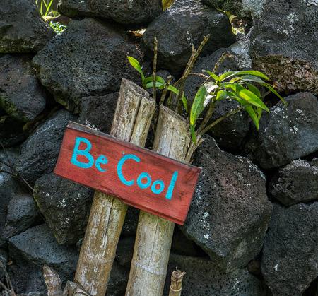 Een vriendelijke groet zit buiten een Hawaiiaanse huis op het Grote Eiland van Hawaï.