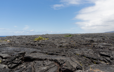 lava field: A large lava field on the big island of Hawaii on its eastern side of the island.