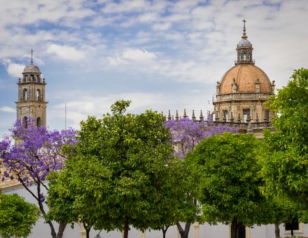 Catedral de San Salvador as seen above the tree tops. Stock Photo
