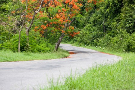Curve,Way at Rayong Thailand photo