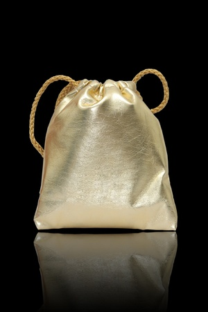 Gold bag in black background.,use for keep money or cosmetics Stock Photo - 9353745