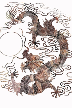 Pattern of dragon on white background photo