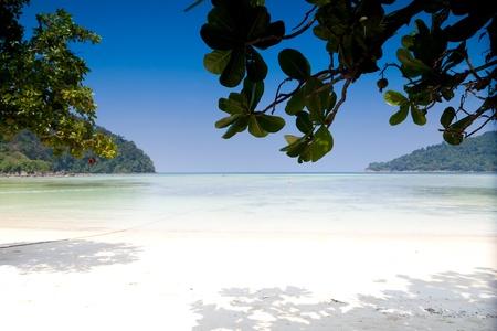 Mai ngam beach at Surin Island Thailand photo
