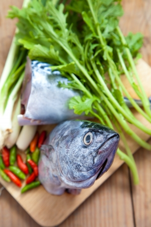 Tuna is one of food ingredient for health photo