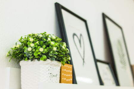 Flower on shelves with Heart shaped photo frame. Stock Photo