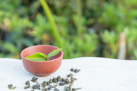 Cup of tea and tea leaf on the stone wall table and the tea plantations background Stock Photo
