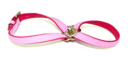 complement: Pink dog harness