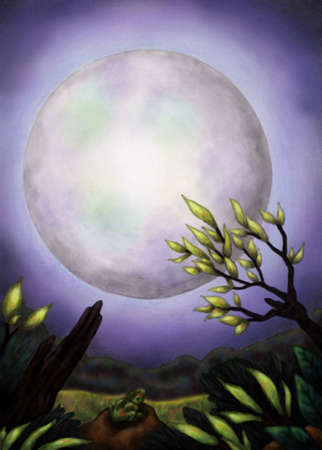 meaningful: big full moon at night shining above a landscape