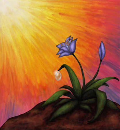 abstract symbolism: flower with a water drop in light