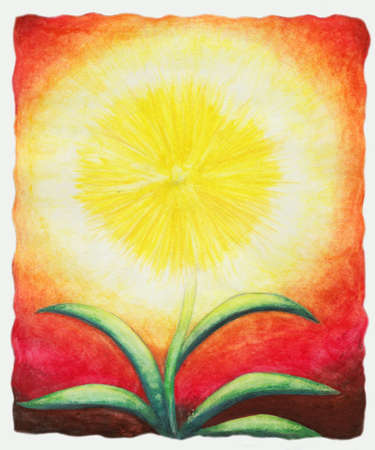 abstract symbolism: A yellow flower like a shining sun Stock Photo