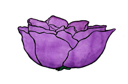 a colorful abstract watercolor painting illustration of a rose with purple violet leaves, a simple motive