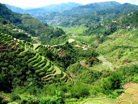 gradas: Terrazas de arroz de Banaue Foto de archivo