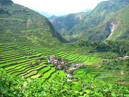 gradas: Terrazas de la aldea y del arroz de Batad