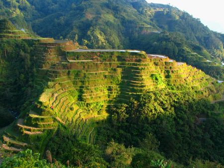gradas: Banaue terrazas de arroz
