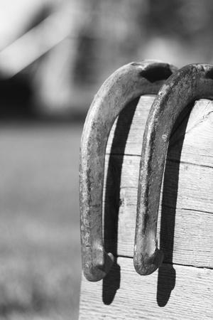 Hoefijzers op oude raad van bestuur in zwart en wit