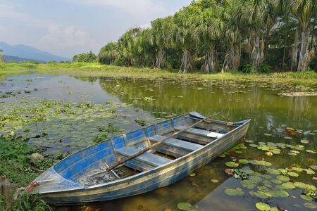 raft floating over wetland