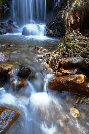 Small waterfalls in the interior of Andean forest
