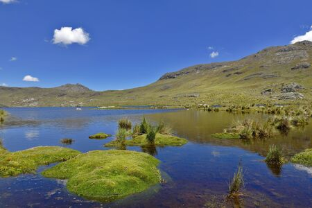 High Andean lagoon in the central highlands of Peru with native vegetation (Distichia muscoides) in the foreground