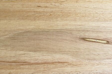Wood texture; background detail