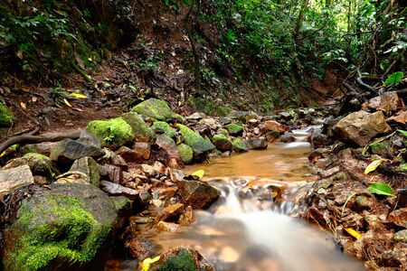 Small stream that runs its waters into the deep jungle. Chanchamayo, Peru